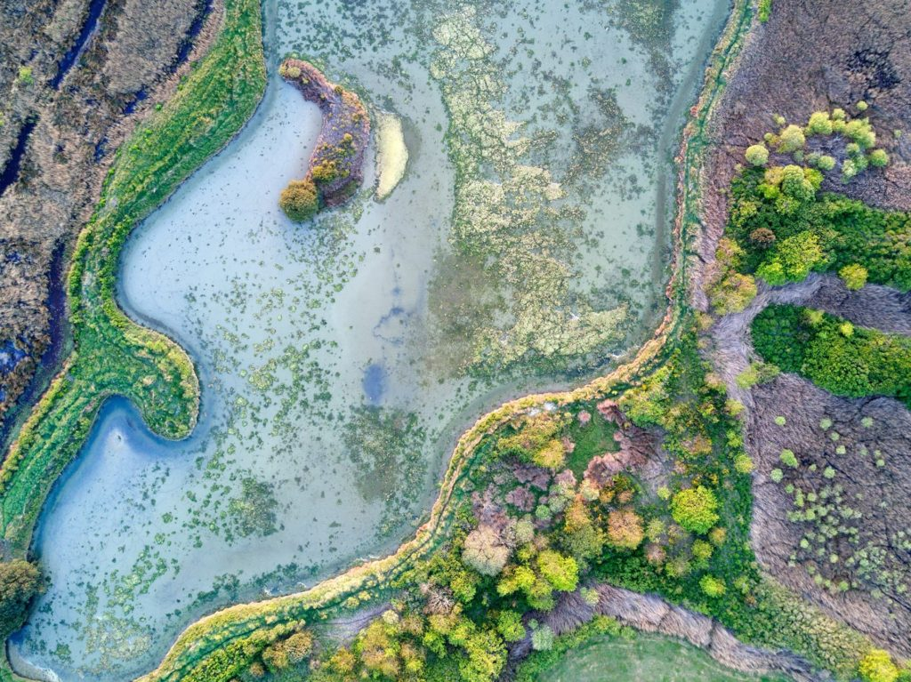 Un paysage, une faune et une flore incroyable à découvrir lors de vos ballade dans les Marais Salant de Guérande
